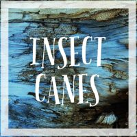 Insect Canes