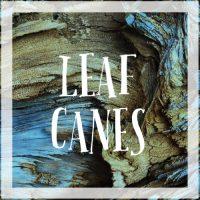 Leaf Canes